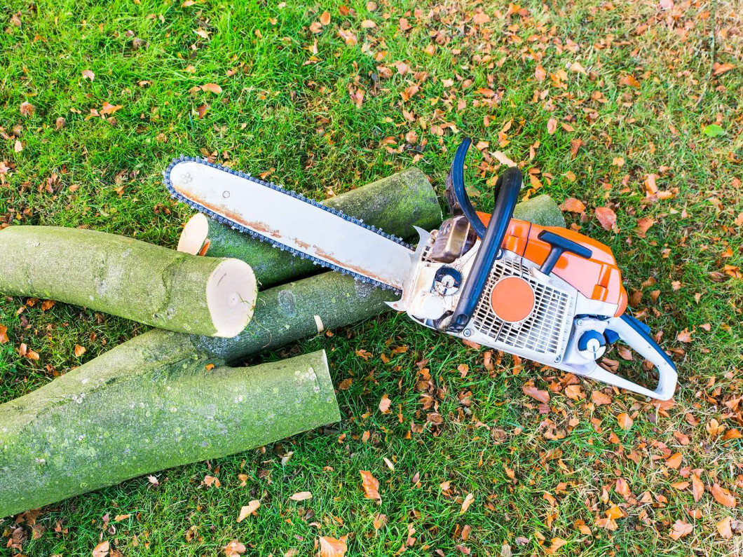 tree trimming bolingbrook il